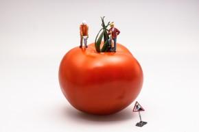 tomato-546989_1920